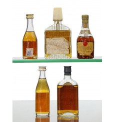 Assorted Cognac/Armagnac Miniatures x5